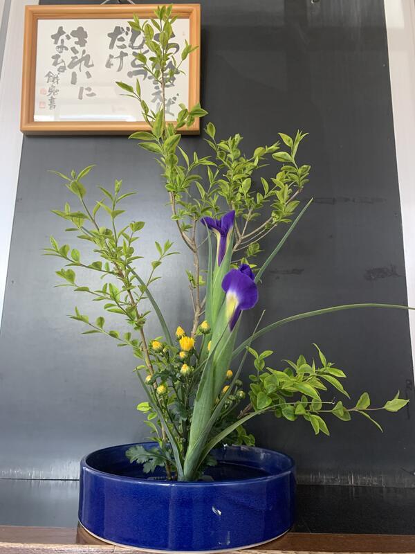 今回のお華は、エボタ.アカリス.小菊です。