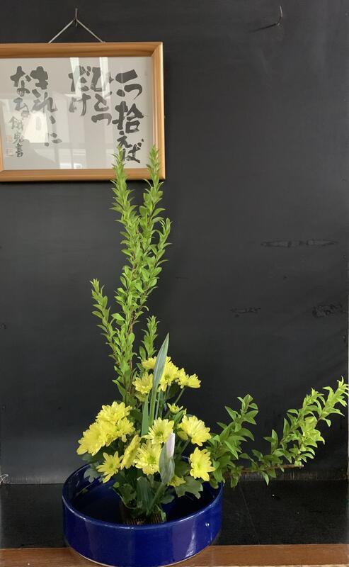 今週のお華は、雪柳 菖蒲 菊です。